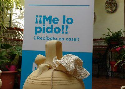 Presentacion Botijo.Online